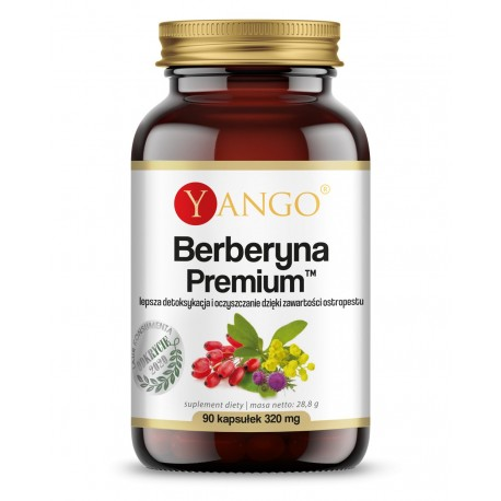 Berberyna Premium (Berberis aristata) - 90 kaps. Yango